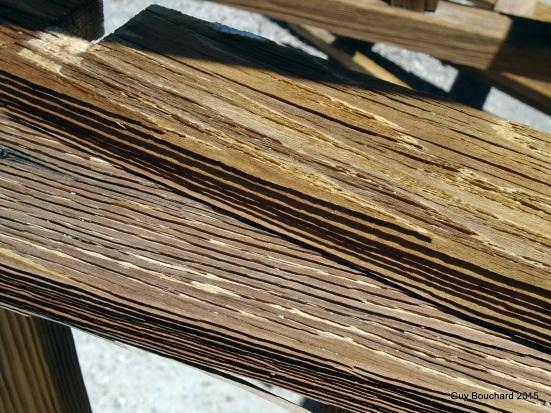 Du bois vieux de plus de 100 ans séché par la chaleur du désert dans le cimetière de la ville fantôme Oficina Chile