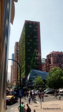Un mur de verdure