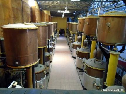 La coopérative de production de Pisco Capel